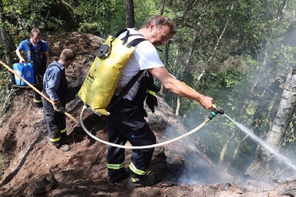 Etwa 60 Kameraden versuchen am Montagnachmittag, den schwelenden Waldboden im Schrammsteingebiet zu löschen.