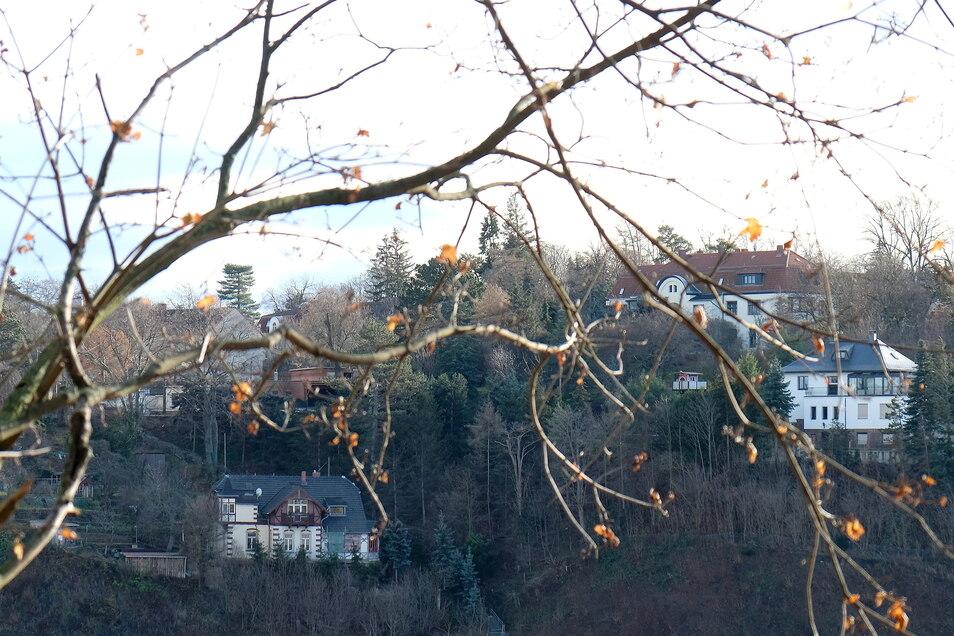 Der sogenannte Plossen, ein Höhenzug über Meißen, gehört zu den bevorzugten und teuren Wohngegenden in der Stadt. Betrüger Henryk B. hätte sich hier gern angesiedelt.