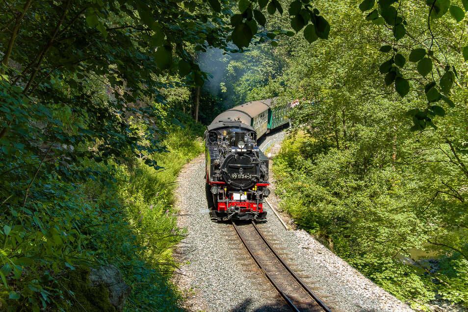 Am Wochenende fährt die Bahn wieder durchs Weißeritztal.