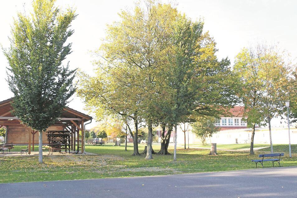Ähnlich dem bereits auf dem Freizeitpark-Gelände stehendem Pavillon entsteht ab Mitte April ein weiterer, viel größerer Veranstaltungspavillon gleicher Bauart.