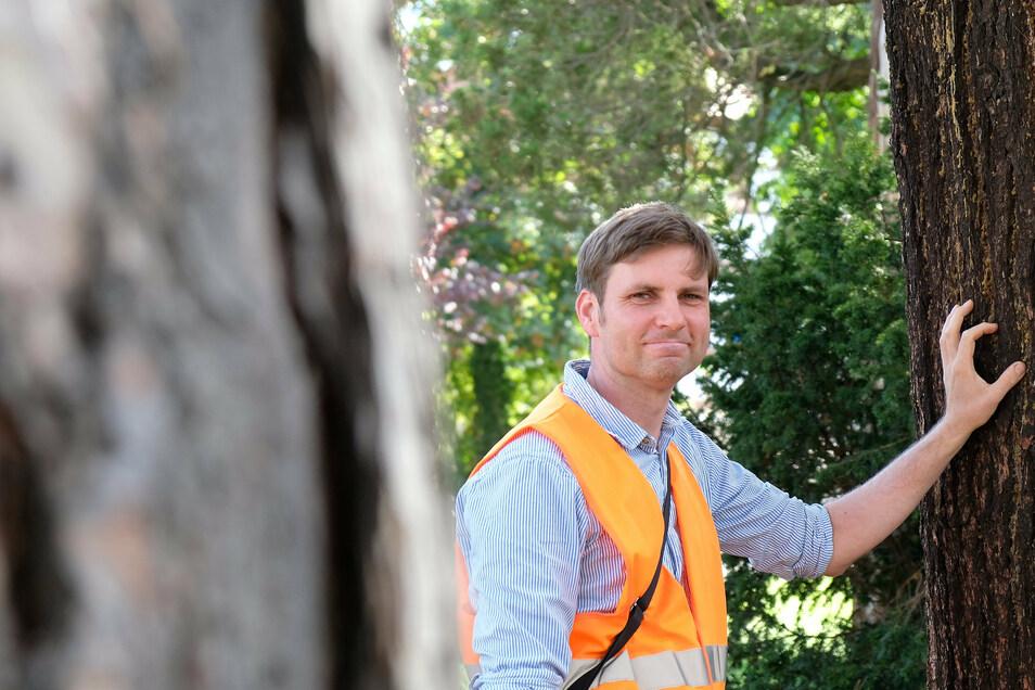 Seit einem Jahr gibt es in Meißen eine Extrastelle allein zur Baumkontrolle.