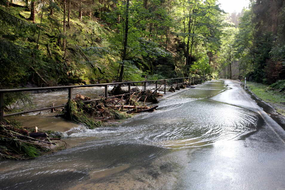 Alles im Fluss: Am Loch-Räumicht, der Straße zwischen Ottendorf und dem Kirnitzschtal, hat der Ottendorfer Dorfbach die Fahrbahn geflutet.