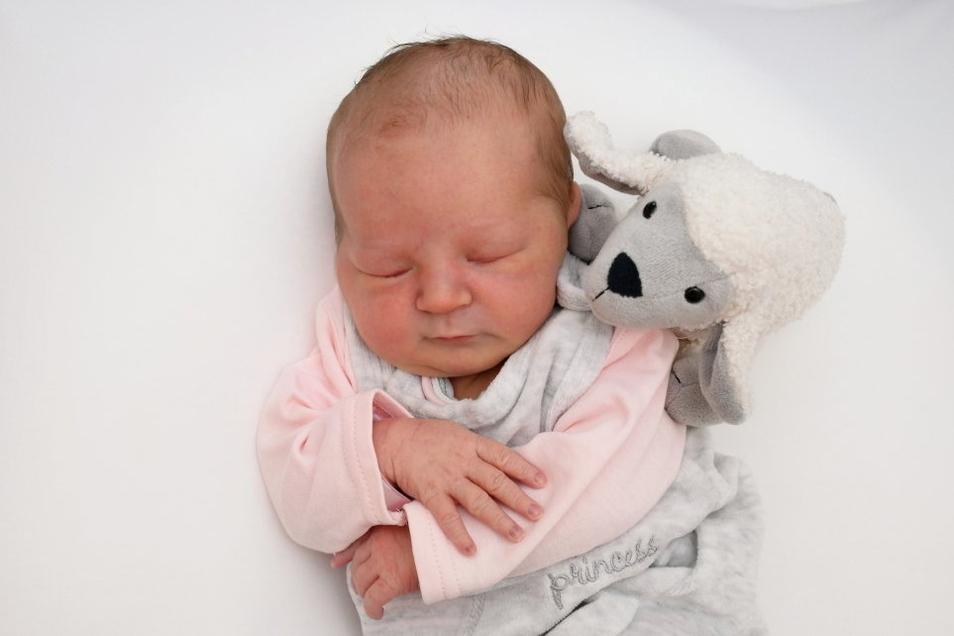 Paulina Cornelia, geboren am 18. Juli, Geburtsort: Pirna, Gewicht: 3.515 Gramm, Größe: 51 Zentimeter, Eltern: Jenny Völkel und Thomas Völkel mit Tim, Hanna, Miley und Leeland, Wohnort: Pirna