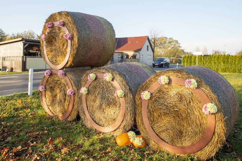 Die aus Strohballen gestaltete Zahl 800 kündet am Ortseingang von Brockwitz vom Ortsjubiläum, das erst im kommenden Jahr gefeiert werden kann.