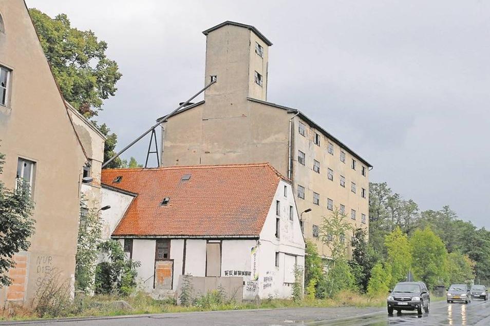 Diesen Anblick gibt es heute nicht mehr. Das ehemalige Getreidelager der Hafermühle ist bis aufs Erdgeschoss verschwunden, allerdings nicht ganz so, wie es der Eigentümer geplant hatte. Fotos: Egbert Kamprath