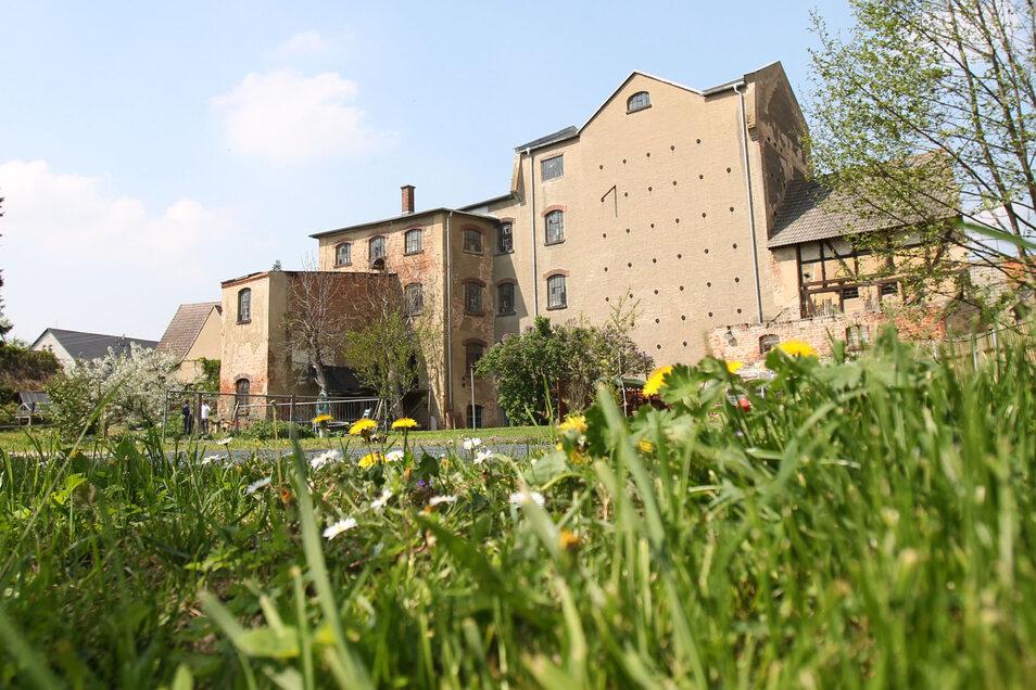 Die Wassermühle Oelsitz ist ab 10 Uhr für Besichtigungen und Führungen geöffnet. Ein Förderverein bemüht sich um Erhalt und Instandsetzung des Gebäudes und der Mühlentechnik.