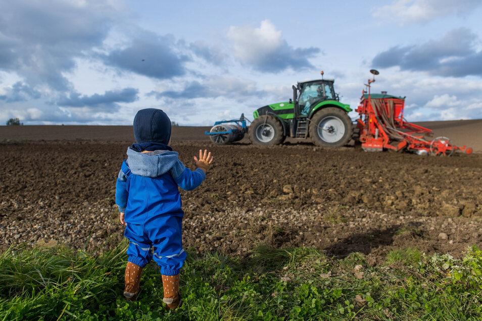 Kinder brauchen gar nicht so viel Unterhaltung. Nur einem Traktor zuzuschauen kann den Kleinen schon großen Spaß machen.