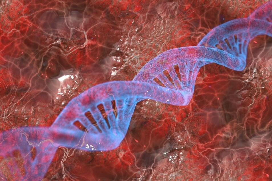Vor rund 5.000 Jahren es tiefgreifende genetische Veränderungen.