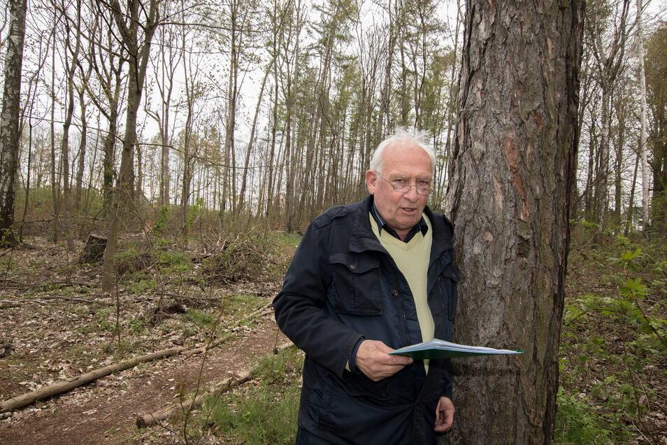 """Herbert Seidel (69) aus Hartha wohnt direkt neben dem Stadtwäldchen. Er ist mit dem derzeitigen Zustand des Waldstücks unzufrieden. Früher sei es ein Schmuckstück gewesen, heute ein """"Saustall""""."""