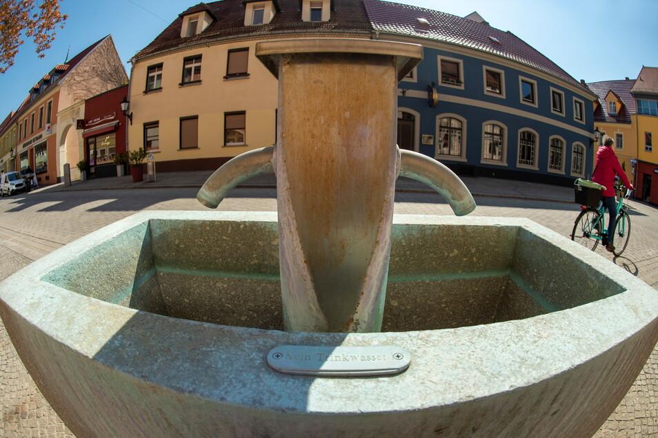 Der Neumarktbrunnen entstand im Zuge der Sanierung des Neumarkts. Im Jahr 2007 wurde er vor der Karl-Preusker-Bücherei neu errichtet.