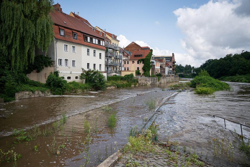 Die Halbinsel unterhalb der Vierradenmühle ist in Görlitz teilweise überflutet.