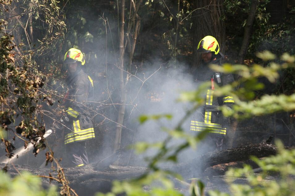 Waldbrände zu löschen, ist für die Feuerwehrleute immer wieder eine Herausforderung.