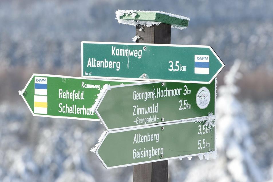 Der Kammweg führt über den Kahleberg bei Altenberg.
