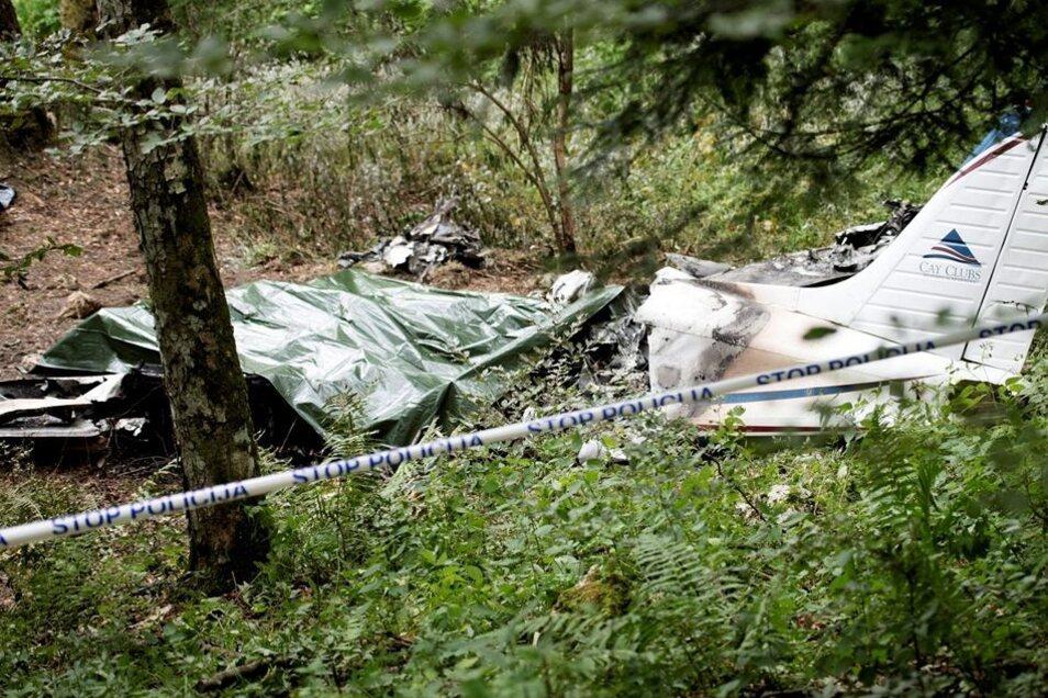 Absturz: Die gecharterte Piper zerschellt in einem schwer zugänglichen Waldstück in Slowenien, alle Insassen kommen ums Leben.