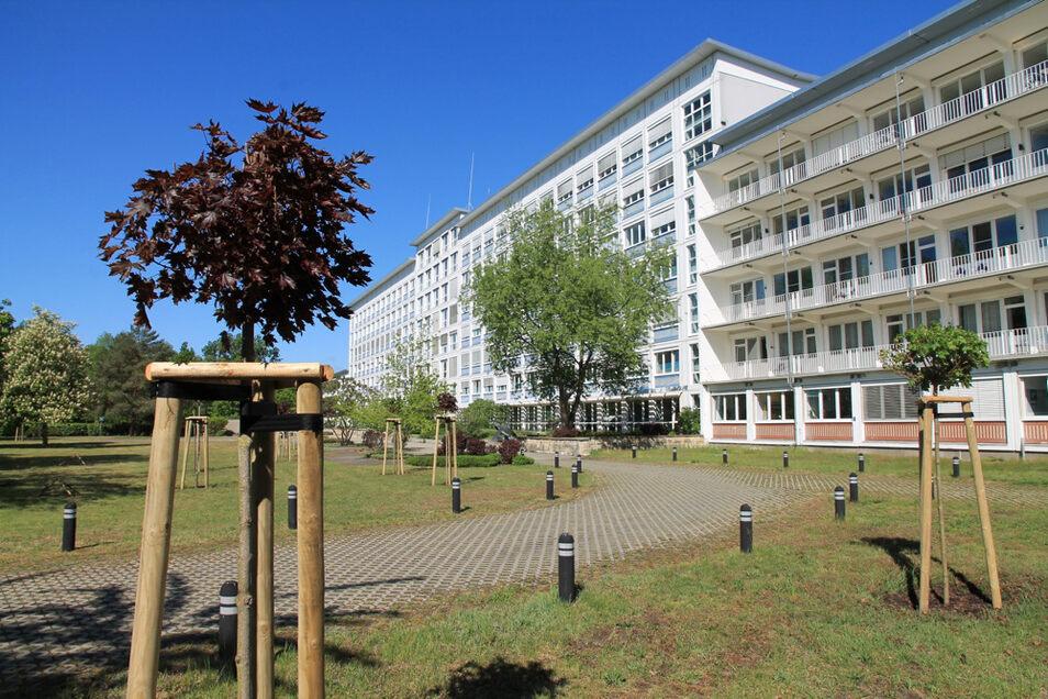 Der Park des Lausitzer Seenland Klinikums wurde mit Ersatzpflanzungen aufgehübscht.