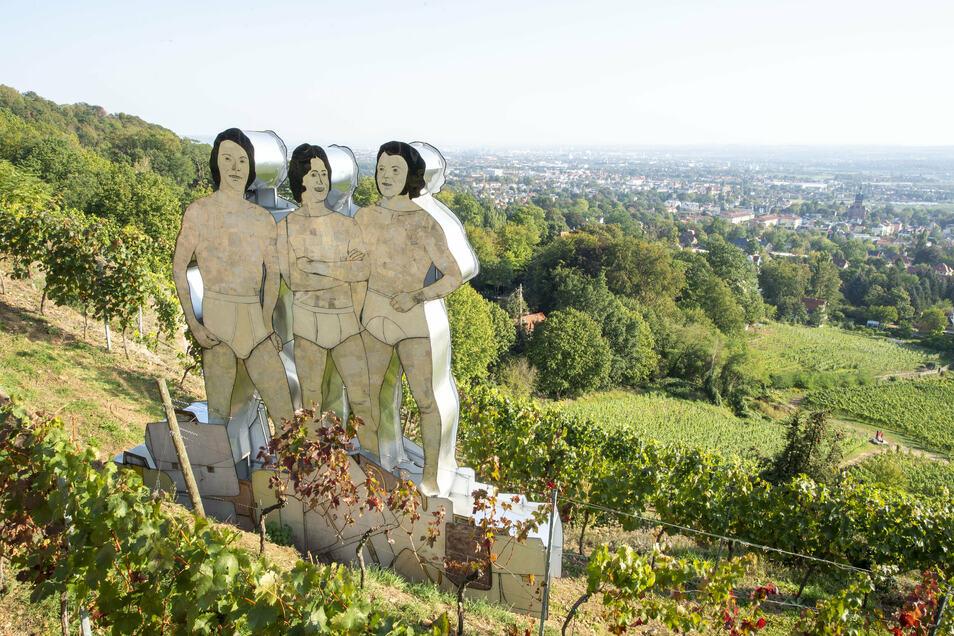 """Skulptur mit Weitblick: In der Steillage des Hermannsbergs hinter dem Weingut """"Drei Herren"""" gibt es nicht nur Kunstgenuss, sondern auch eine tolle Aussicht ins Elbtal."""