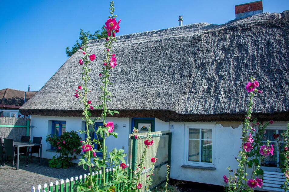Ein Ferienhaus am Hafen von Schaprode auf der Inseln Rügen.