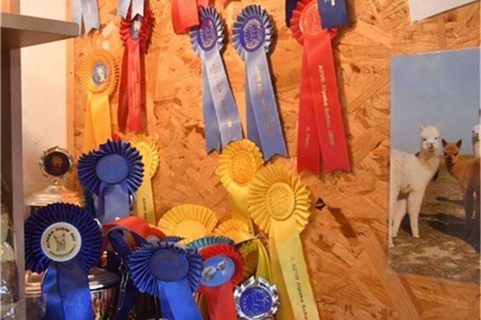 Mit ihrer Zucht hat die Familie viele Preise und Pokale gewonnen.