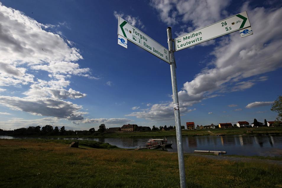 Wie weiter? Schilder am Elberadweg in Riesa verraten die Richtung. Im Hintergrund die Fähre Riepro und Schloss Promnitz.