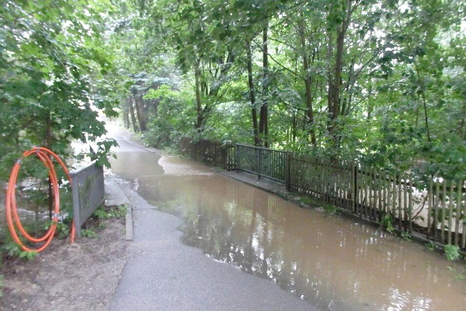 Am Talweg hatte die Wesenitz zeitweise die Straße überspült.