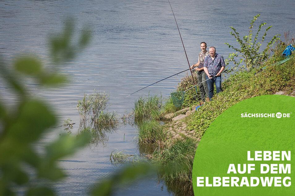 Unweit des Elberadwegs in Dresden haben Fischer ihr Revier. Das Angeln liegt im Trend, sind sie überzeugt.