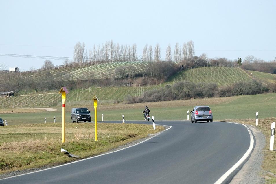 Hier, entlang der Kreisstraße zwischen Niederau und Gröbern, soll auch ein Fahrradweg entstehen.
