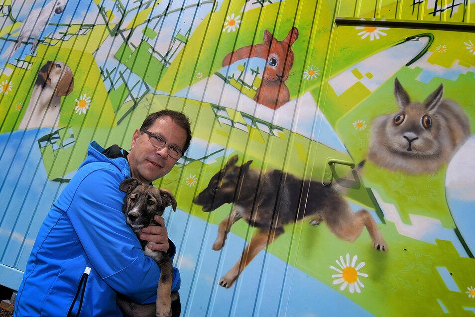 Graffitikünstler Frank Schäfer hat die Außenwand des Pausencontainers im Tierheim Ostrau gestaltet.