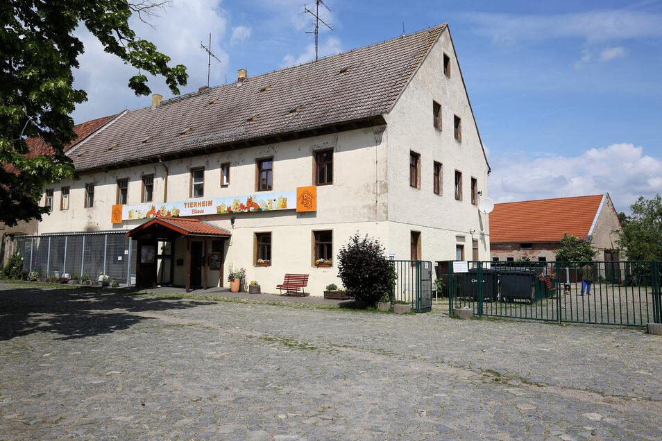 Das Tierheim auf Gut Göhlis bei Riesa. Der Betreiberverein will die Immobilie und die benachbarten Gebäude kaufen, um mehr Sicherheit zu haben.