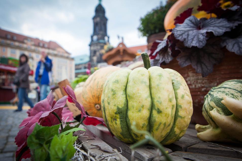 Der Dresdner Herbstmarkt muss dieses Jahr ausfallen.
