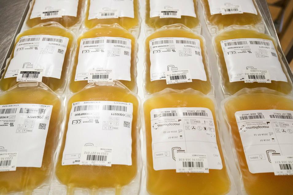 Beutel mit Blutplasma liegen in der Herstellungsabteilung des DRK-Blutspendedienst vor dem Gefriergerät.