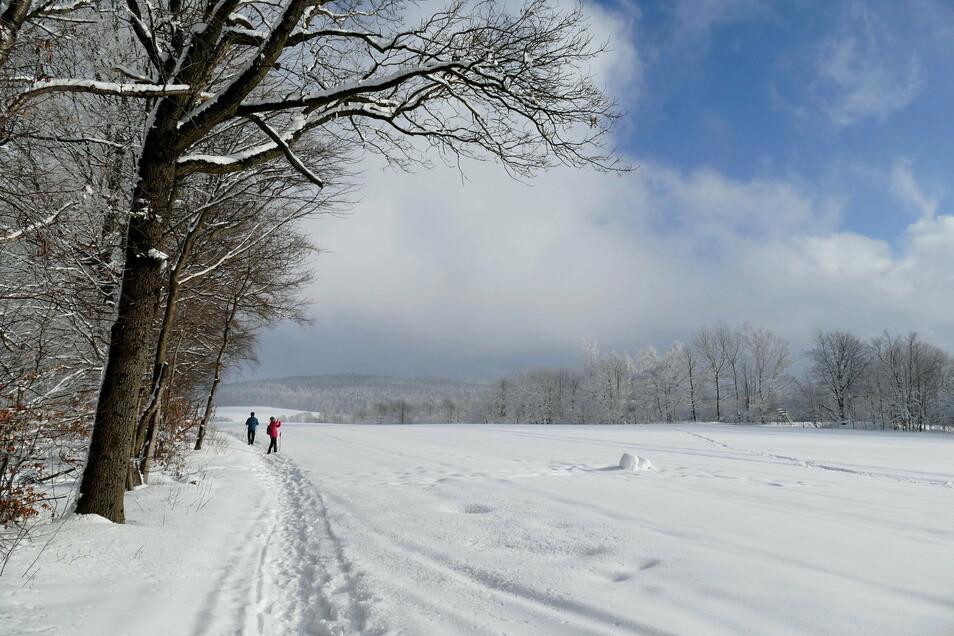 Nichts als Schnee: Ullrich Jentzsch aus Sebnitz sind als Hobbyfotograf schon viele tolle Schnappschüsse gelungen. Diesen hat er bei einer Winterwanderung am Unger in Rugiswalde aufgenommen - bei strahlendem Sonnenstein.