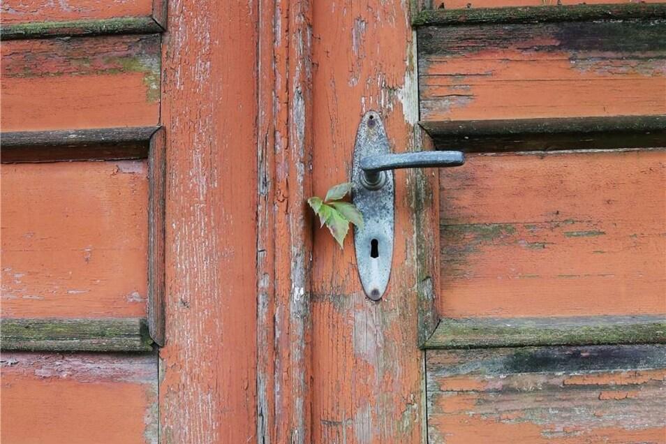 Neugierig lugt Grün durch die Tür; bald werden hier Mieter die Klinke drücken.