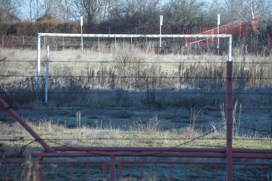So sieht es aus, wenn ein Sportplatz ein Jahr lang nicht genutzt wird: Ein aktueller Blick ins Riesaer Grube-Stadion.