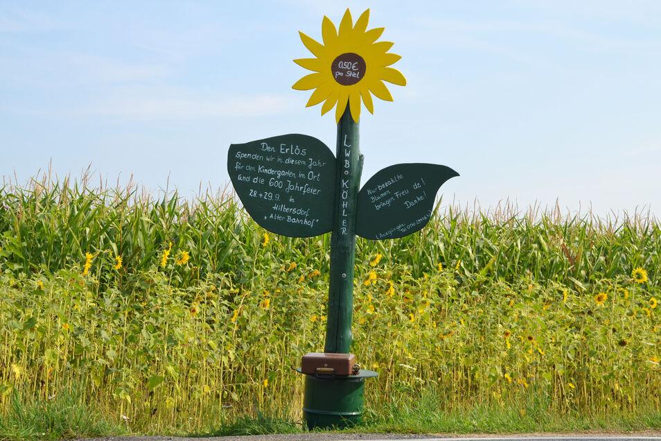 Am Straßenrand weist eine besondere Sonnenblume auf eine besondere Aktion hin.
