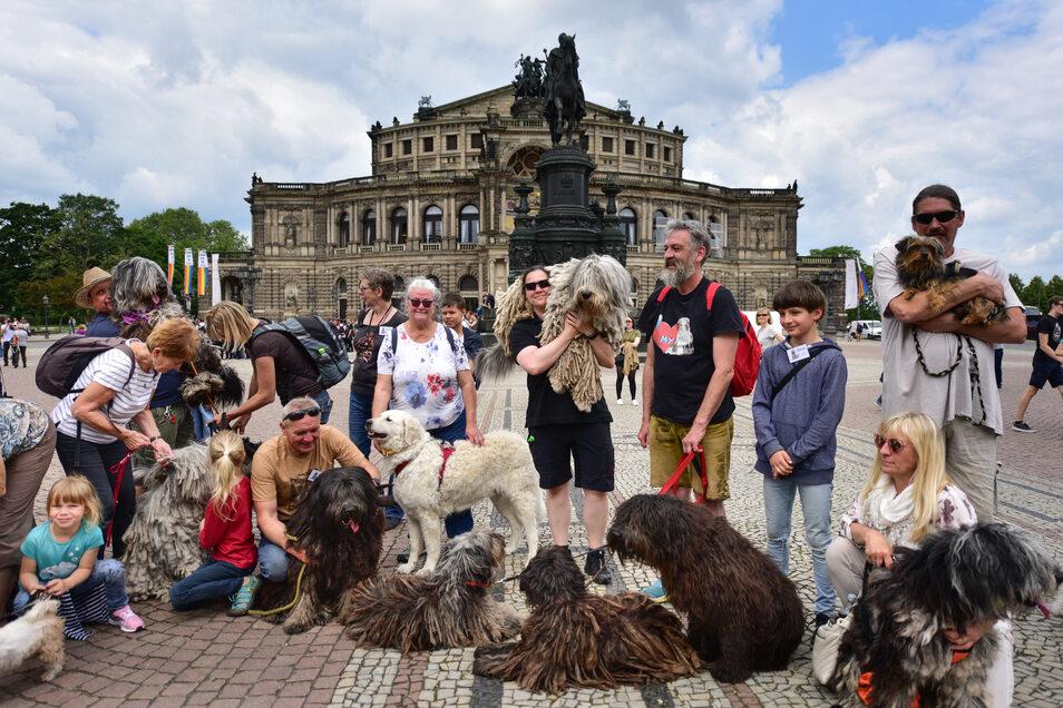 Auf dem Theaterplatz gab es ein Gruppenfoto mit den Zottel-Hunden.