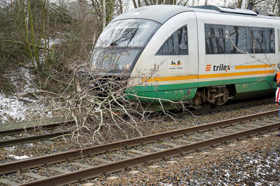 Einer der zuletzt häufig auftretenden Vorfälle mit Bäumen auf Schienen passierte am 1. Februar bei Pommritz.