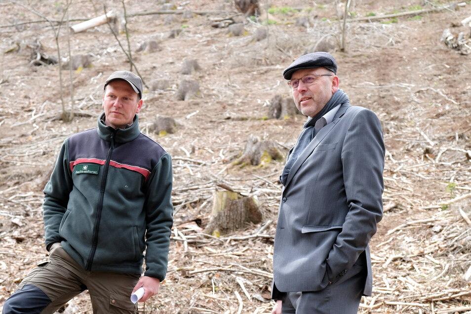 Revierförster Thomas Nikol (von links) und OB Olaf Raschke (parteilos): Beide wünschen sich einen gesunden Wald für die Zukunft.