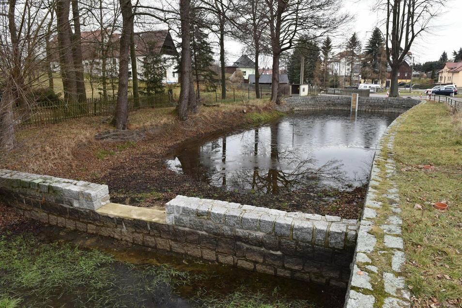 Der Obere Dorfteich in Hirschbach führt zurzeit wenig Wasser.