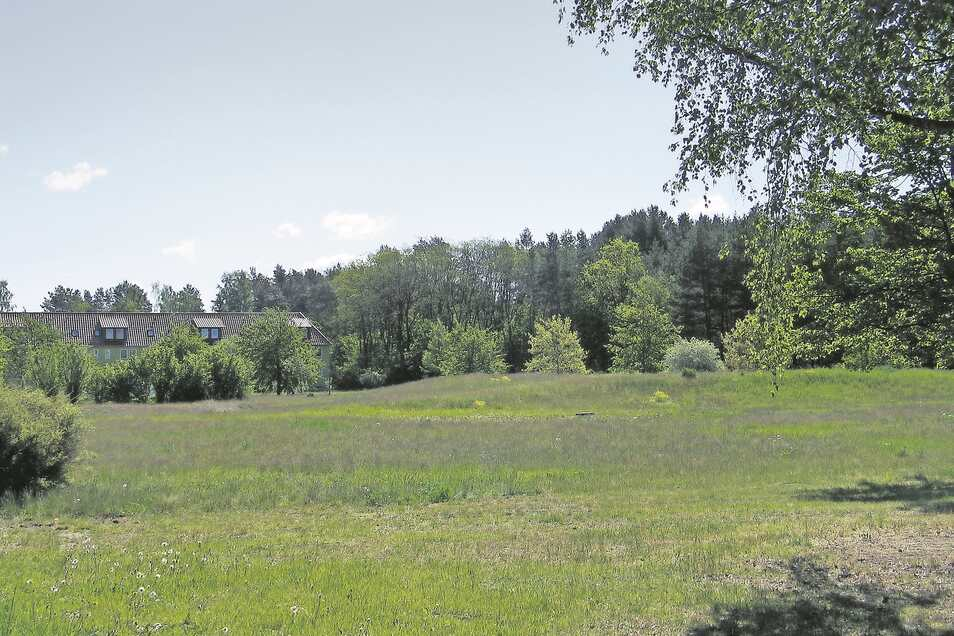 Bisher nur freies Gelände: An der Straße der Freundschaft in Boxberg sollen jetzt die Voraussetzungen für Wohnbebauung geschaffen werden. Der Auftrag zur Erschließung ist erteilt.