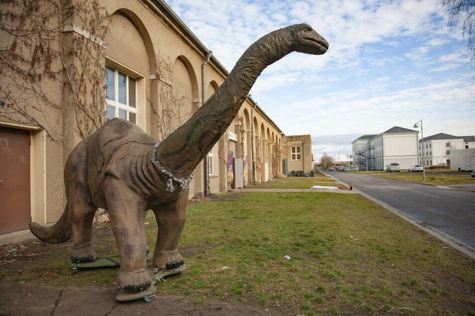 Saurier-Modell vor der Remontehalle in Großenhain: Jurassic World war dort vor knapp einem Jahr. Jetzt - mitten in der Pandemie - soll sich die Meißner CDU hier treffen. Nicht alle Mitglieder sind darüber begeistert.