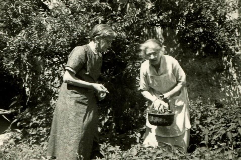 Grafikerin Johanna Schmidt (li.) lebte in Schellerhau (1893-1966).