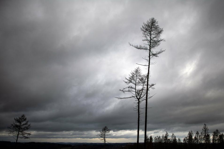 So erwarten Wetterexperten den Himmel über Sachsen am Neujahrstag.