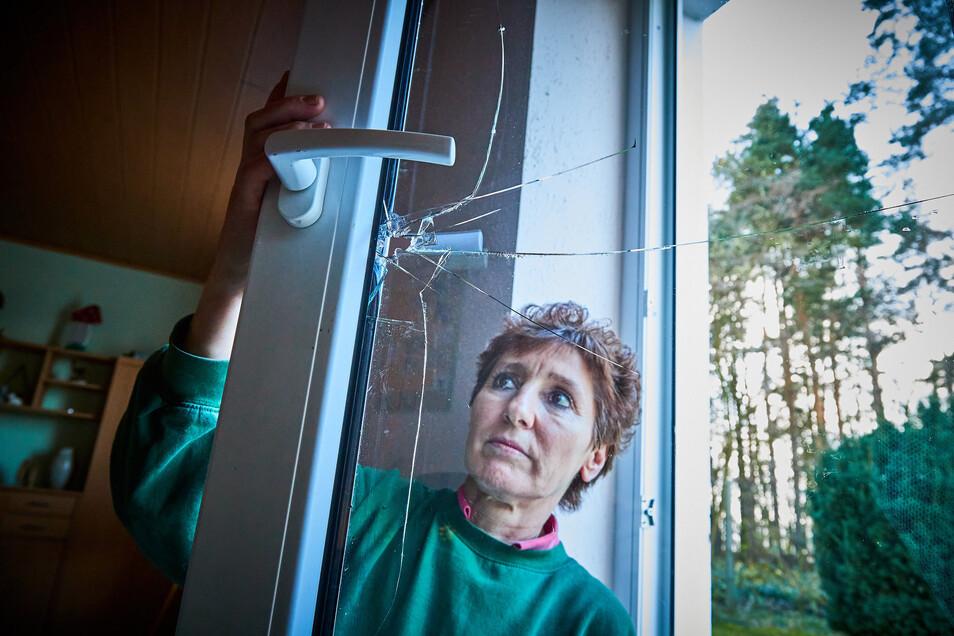 Tierheim-Leiterin Meika Jehn am zerstörten Fenster, durch das offenbar die Täter kamen.