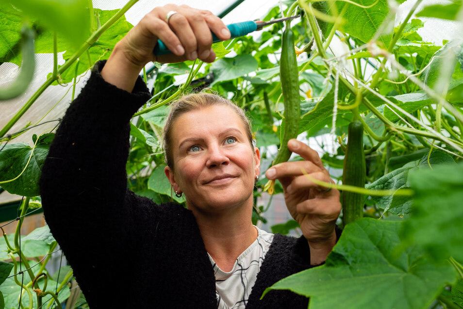 Zierpflanzen muss man im Garten von Corina Cwolek lange suchen. Ihre Leidenschaft gilt dem Anbau und der Ernte von gesunden Lebensmitteln.