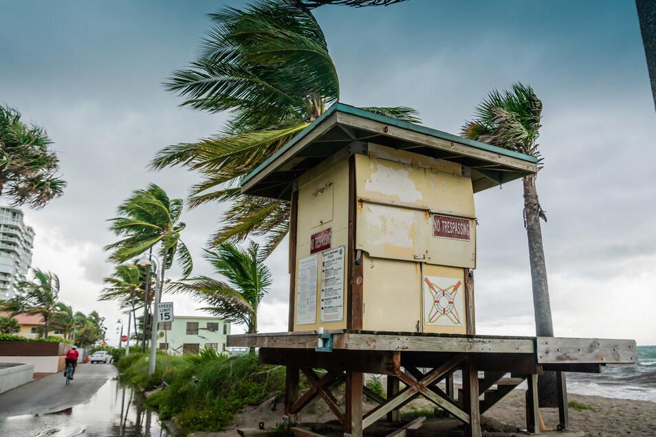 Der Wind weht am Hollywood Beach, als sich der Ort auf das Eintreffen des Hurrikans vorbereitet.