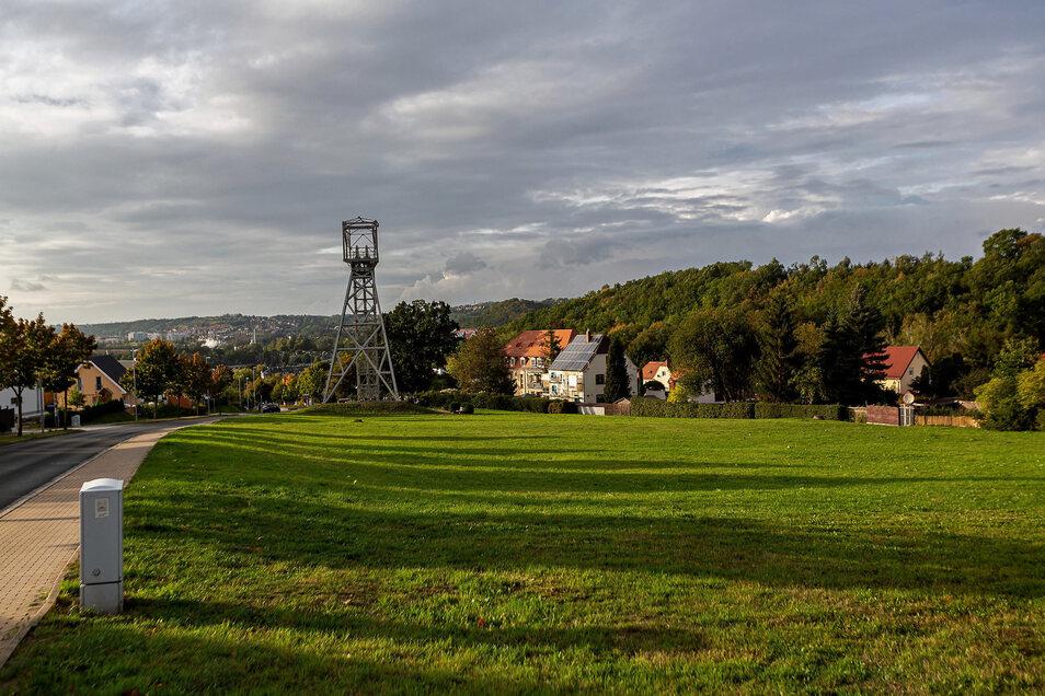 Auf dieser Wiese an der Burgker Straße in Freital soll ein Touristen-Parkplatz entstehen.