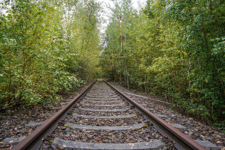 Seit 2007 ist die Bahnstrecke zwischen Bautzen und Wilthen offiziell stillgelegt, aber die Schienen liegen noch. Der Fahrgastverband Pro Bahn möchte, dass hier wieder Züge fahren.