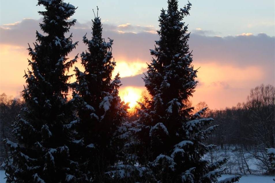 Ende eines sonnigen Wintertags am Horkaer Teich in Bischofswerda.