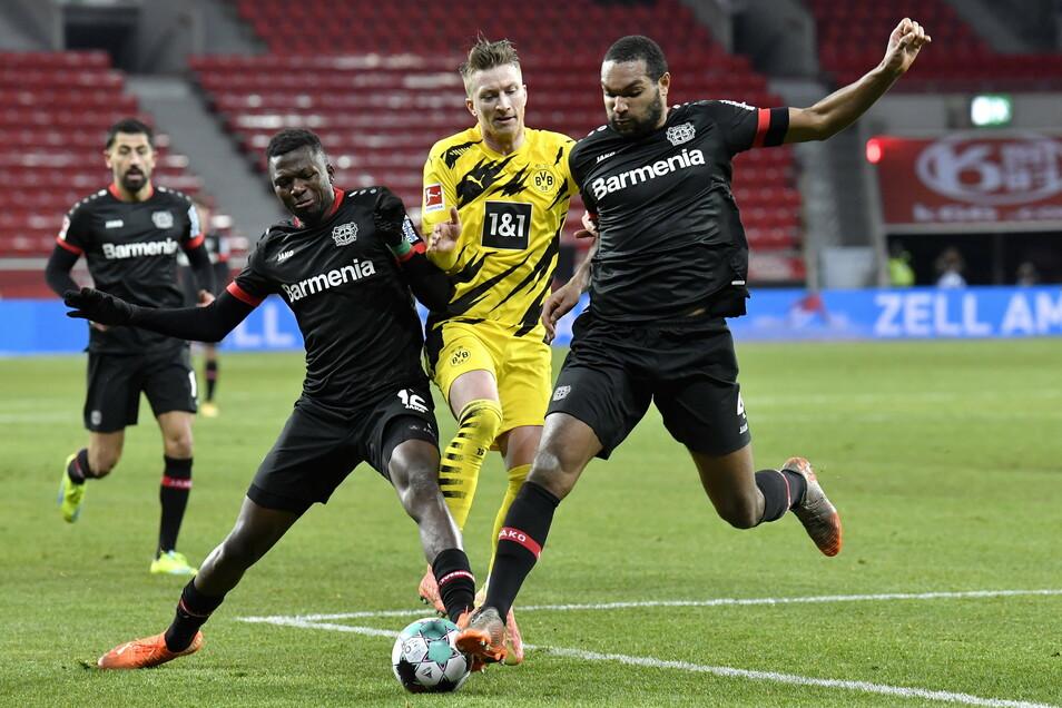 Dortmunds Marco Reus (M) kämpft mit Leverkusens Edmond Tapsoba (l) und Jonathan Tah um den Ball.