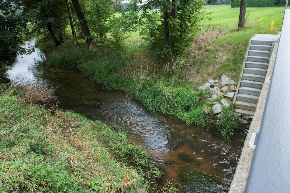 Wie frisch geputzt schaut der Dobrabach nahe Kalkreuth inzwischen aus. All das, was bereits im vergangenen Jahr aus dem Fluss entfernt wurde, wird seit dieser Woche abtransportiert.